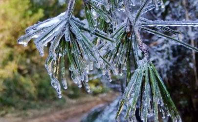 2021-2022年冬天一般冷到几月份