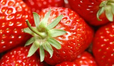 草莓出现一层白粉是病吗插图2