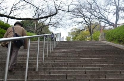 每天爬6楼锻炼身体吗插图1