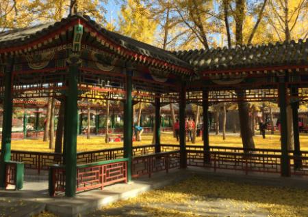 北京中山公园端午节几点关门2021插图