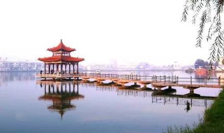 曹县在哪个省哪个市3