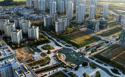 曹县在哪个省哪个市