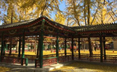 北京中山公园端午节几点关门2021