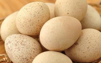 珍珠蛋是什么鸡生的插图2