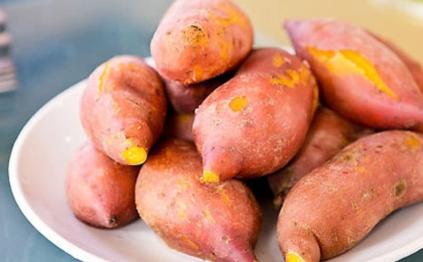 种植红薯怎么判断深栽和浅栽插图