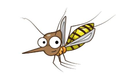 雨为什么砸不死蚊子插图1