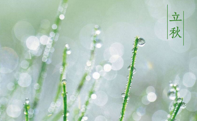立秋后雨水多还是立秋前雨水多2021