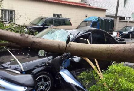 因为台风车被水泡了有保险吗 汽车泡水了保险公司怎么赔