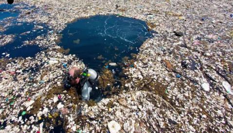 海洋上的垃圾害死了多少生物3