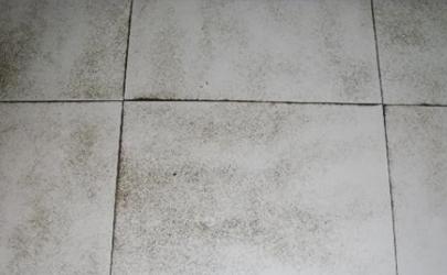 地砖渗入污垢擦不掉吃进去了