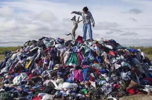 旧衣服回收项目靠谱吗3