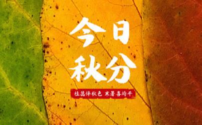 每年秋分为农民丰收节
