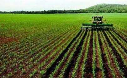 农田补贴在哪个部门去查询2021