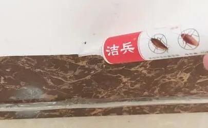 杀蟑胶饵多长时间清理