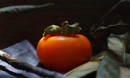 吃柿子不能吃什么食物3