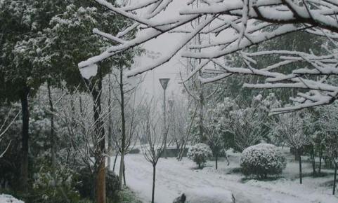 2021陕西今冬或现极寒天气真的假的2