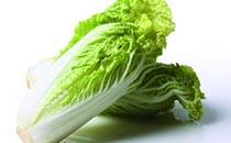 白菜为什么长刺 白菜为什么会开花