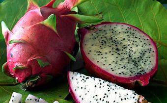 一天吃一个火龙果好吗 火龙果一次吃多少合适