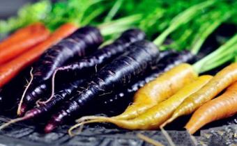 胡萝卜为什么是紫色的 紫色胡萝卜能吃吗