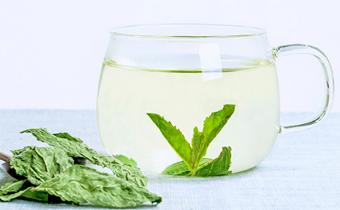 薄荷叶和什么搭配泡茶好 薄荷叶泡水能天天喝吗