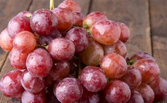 葡萄有籽好还是没籽好 葡萄有籽和没籽有什么区别