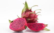 吃红心火龙果小便变红正常吗 吃红心火龙果为什么小便变红