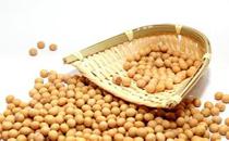 消化不良吃黄豆 宝宝吃黄豆的做法