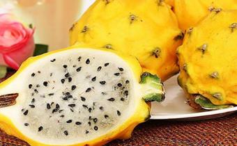 燕窝果和火龙果有什么不同 燕窝果和火龙果哪个好吃